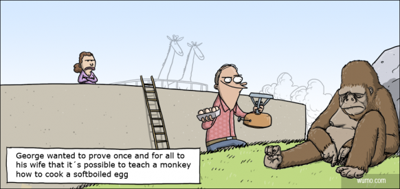 Can you teach a monkey to cook a softboiled egg?