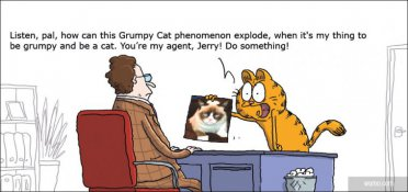 Who's the real grumpy cat?
