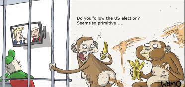 Primitive election